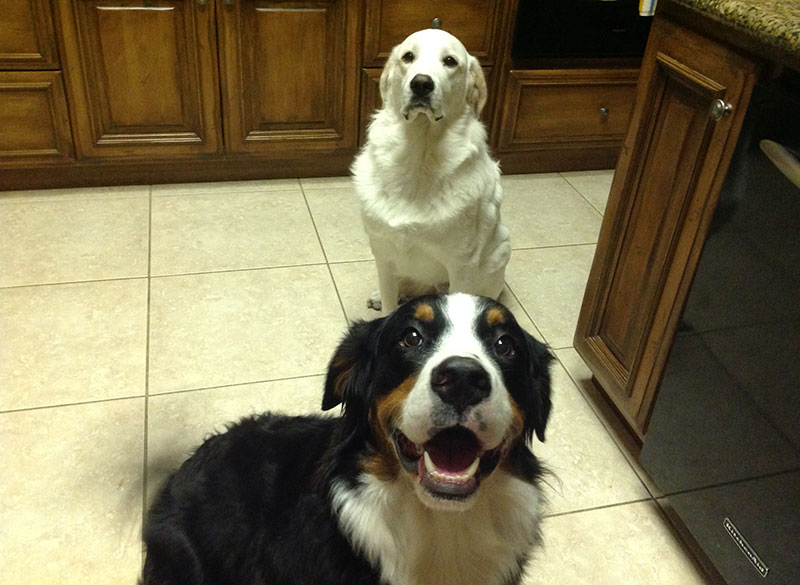 Jordy and Lacy